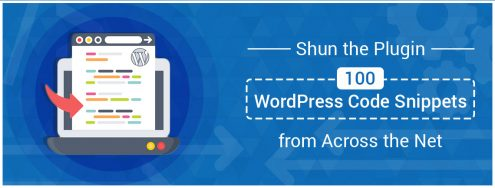 100 WordPress Code Snippets from Across the Net