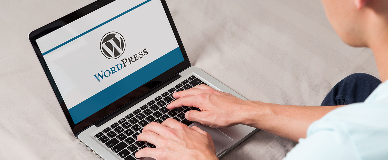 WordPress CMS Development USA, India
