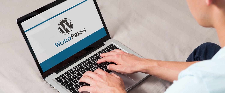 WordPress CMS Development USA, India