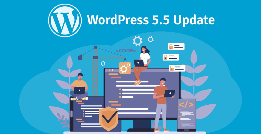 WordPress 5.5 Update