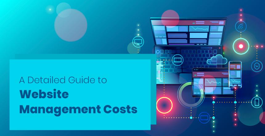 Website Design and Development Costs
